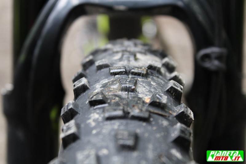 Maxxis Forecaster