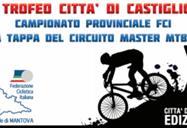 castiglione2.jpg