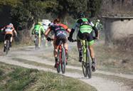 2_bardolino_bike.jpg