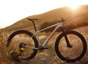 specialized_epic_ht_2020.jpg