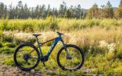 GT Bicycle Pantera e Force GT-E: Arriva la Serie di e-bike GT Power