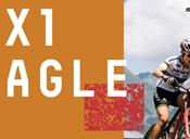 xx1-eagle.jpg