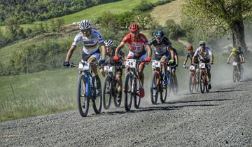Cicli Taddei, vittoria di squadra alla GF Costa degli Etruschi