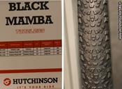 hutchinson_black_mamba.jpg