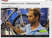 torpado-nearco.jpg