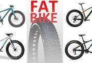 fatbike.jpg