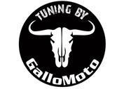 gallo-moto-tuning.jpg