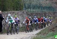 bardolinobike_race.jpg