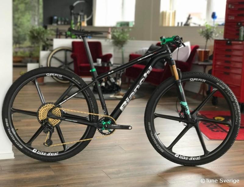 Bianchi Methanol CV custom