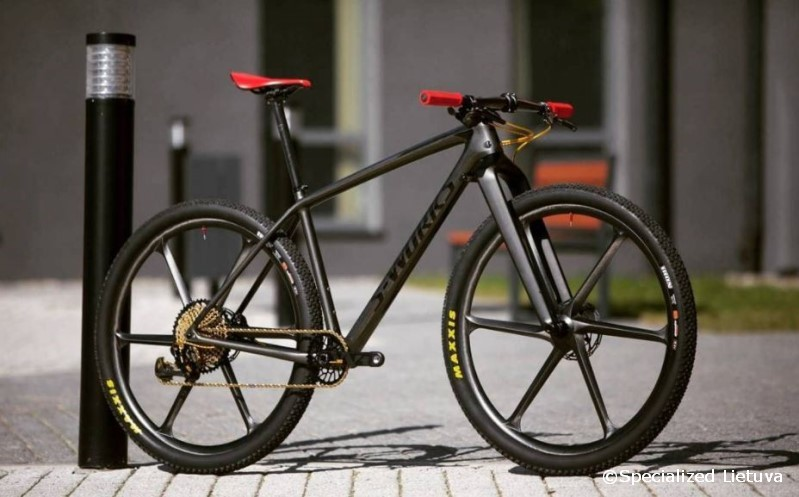 Specialized S-Works Epic custom
