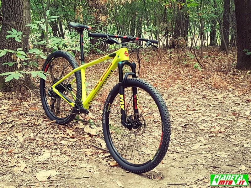Bike Shop Test Milano